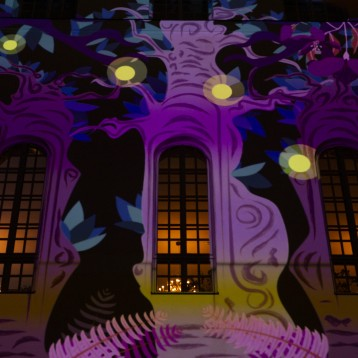 Vivitek brings VJ's work to life at spectacular Aavistus Festival