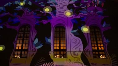 Vivitek brings VJ's work to life at spectacular Aavistus Festival