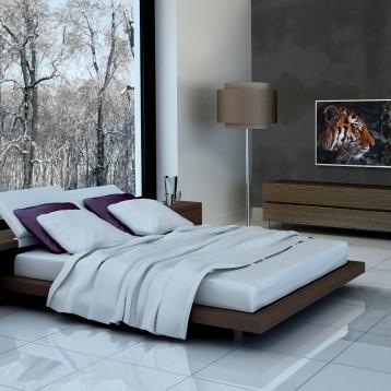 PPDS partner Otrum develops Mirage SaaS platform onto Philips MediaSuite hotel TVs