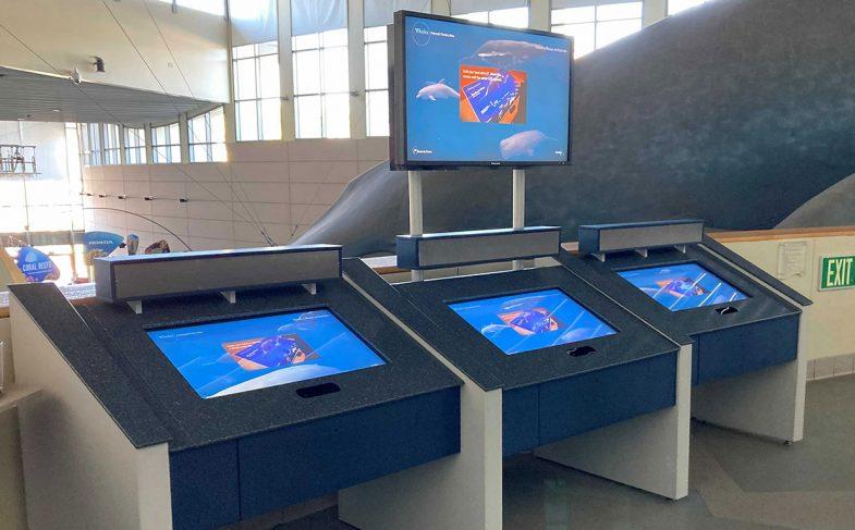 touchless-interactive-exhibit-aquarium